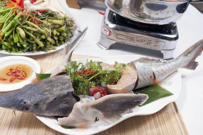 Cá tầm là con gì? Cá tầm là loài cá nước ngọt có giá trị dinh dưỡng cao. Với hàm lượng vitamin A, selen và DHA cao, bổ ích cho sức khỏe con người.
