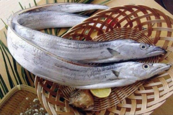Giá trị dinh dưỡng và lợi ích của cá hố
