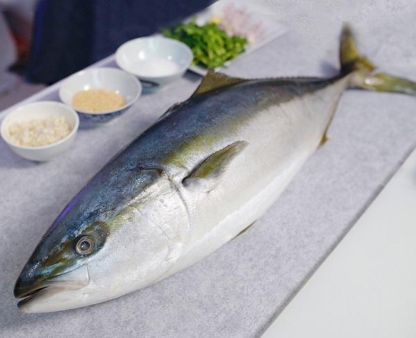 Cá cam Nhật Bản
